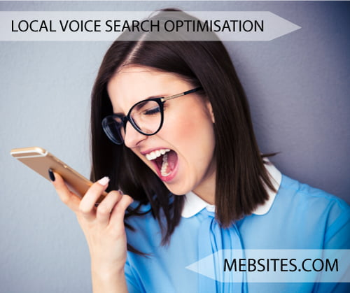 voice search engine marketing SEO